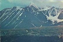 Montana ❤️ Born & Raised / by Ashley Curtiss