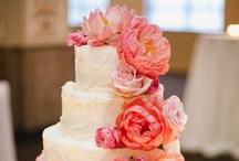 Cakes / by Anna Coates