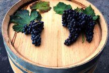 Wine not? / Wine I love or I'd like to taste