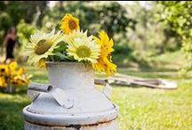 #FlowerObsessed