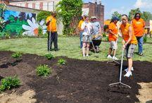 Garden: Community Gardening / Community gardens and gardening with others