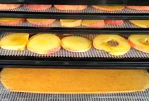 Food: Preservation / Food Preservation