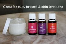 Healing Herbs / Essential Oils