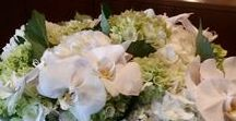 Flowers / The best floral arrangements than you can imagine.