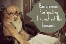 BARK OUT LOUD! / Some of the funniest dog humor on the Internet. / by Dogster
