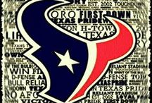 Houston Texans / by Brandy Wilkes