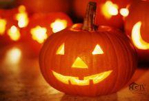Halloween / by Tina Tankersley