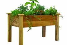 Container Garden Guide / Container Gardening Ideas, Advice, Tips, Images and Design