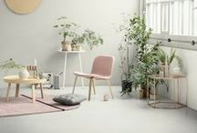 Indoor Plants / I find indoor plants to be so rewarding - with just a bit of know-how and a small bit of effort, you're rewarded with living, breathing (they really do respirate) things that cheer up a room, clean up the air, and add texture, color, and depth to your decor. WIN!