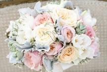 Wedding Ideas / by Elisa