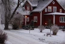 WINTER (& SNOW SCENES) / by Joann Drescher