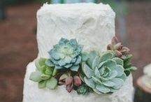 Cakes / by Events Nashville