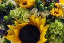 Sunflower Wedding / by Katya MMM