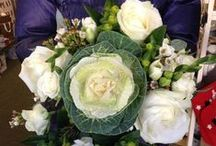 Green Flowers / What flowers are green?? Take a look and see if any take your fancy! Green wedding flowers are very popular too with a vintage wedding and country garden wedding theme.