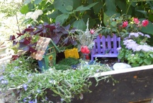 Garden and Yard / by Classy Lil Miss