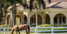 Equestrian Properties For Sale in Florida / Equestrian and horse properties for sale in Florida.