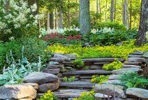 E. C. O. M. O. U. N. T. A. I. N....G. A. R. D. E. N. / My dream garden to accompany my modern, mountain escape. / by Brenda Drake