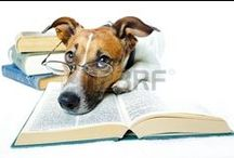Reading & Writing Pets / Who says animals can't get in on the literary fun?