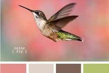 COULEURS / Association de couleurs, combo ; parfait pour la décoration intérieur, couleurs d'un mariage, assortiment vêtements pour séances photo