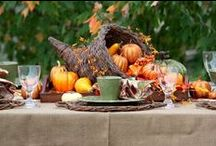 The Cozy Chicks Set a Thanksgiving Table / Are you ready to create a cozy Thanksgiving table? Let the Cozy Chicks help you decorate with a tables cape that will make the whole family oh and ah in delight!  / by Cozy Chicks