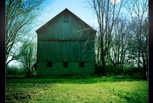 at our farm / images from Lakestone Family Farm!!
