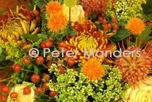 daily work / bloemwerk / flower art