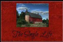 The Single Life / Faith, love, and life as a single Christian
