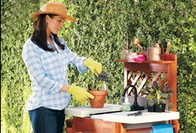 Gardening / Does your home make a great first impression? Check this board for landscaping and gardening ideas and solutions that'll help make your home the best on the block. / by Improvements Catalog