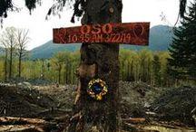Tribute to Oso-Darrington / Oso, Wa land slide tribute through pictures