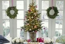 Christmas / by Lisa Clark