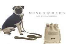 Pinterest for Pugs / by qt. cheezelener