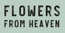 Flowers from Heaven / Gorgeous Blooms and Arrangements Inspired by the Local Flowers Movement: botanical, organic, flowers, local flowers, slow flowers, gardening
