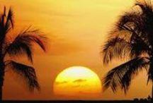 Hawaii: Scenery / by Cathi Sarracino