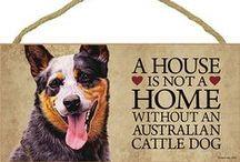 Australian Cattle Dog Lover / Everything you love about the Australian Cattle Dog (Red Heeler/Blue Heeler)