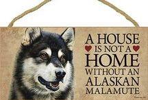 Alaskan Malamute Dog Lover / Everything you love about the Alaskan Malamute