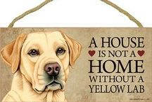Yellow Lab Dog Lover / Everything you love about the Yellow Lab!