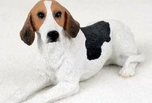 American Fox Hound Dog Lover / Everything you love about the American Fox Hound