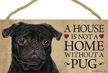 Pug Dog Lover / Everything you love about the Pug pinned onto one board!