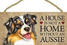 Australian Shepherd Dog Lover / Everything you love about the Australian Shepherd!