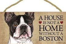 Boston Terrier Dog Lover / Everything you love about the Boston Terrier
