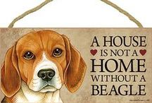 Beagle Dog Lover / Everything you love about the Beagle!