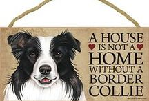 Border Collie Dog Lover / Everything you love about the Border Collie!