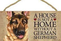 German Shepherd Dog Lover / Everything you love about the German Shepherd!