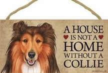 Collie Dog Lover / Everything you love about the standard and smooth Collie!