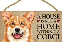 Welsh Corgi Dog Lover / Everything you love about the Welsh Corgi!