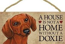 Dachshund Dog Lover / Everything you love about the Dachshund!
