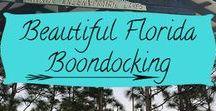 FloRida Adventures!! / Great Florida Adventure finds!!