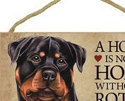 Rottweiler Dog Lover / Everything you love about the Rottweiler!
