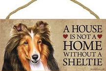 Sheltie Dog Lover / Everything you love about the Sheltie!