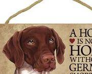 German Shorthaired Pointer Dog Lover / Everything you love about the German Shorthaired Pointer!